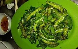 Những món ăn kinh hãi từ sâu bọ khiến thực khách giật mình nhưng ăn vào lại bị nghiện