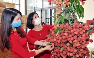 Muốn mang vải thiều vào Nam, doanh nghiệp bán lẻ than chi phí logistics đi ngược thế giới