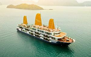 Chủ 500 tàu du lịch Quảng Ninh và cú sống với ngân hàng chưa hồi kết