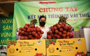 Ảnh: Báo NTNN/ Điện tử Dân Việt chung tay kết nối tiêu thụ vải thiều Lục Ngạn, Bắc Giang