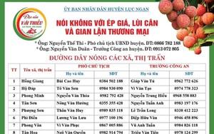 Bắc Giang: Thủ phủ vải thiều Lục Ngạn công khai đường dây nóng để ngăn chặn tình trạng này