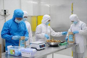 Kết nối thủ tục kiểm tra chất lượng thức ăn thủy sản lên cơ chế một cửa quốc gia