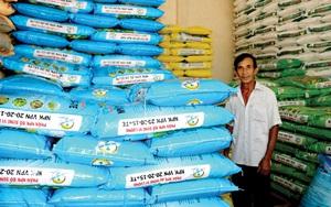 Giá phân bón tăng cao, nông dân chóng mặt, Cục Bảo vệ thực vật đề nghị doanh nghiệp làm ngay việc này