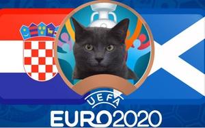 Mèo tiên tri Cass dự đoán kết quả Croatia vs Scotland: Bất ngờ!