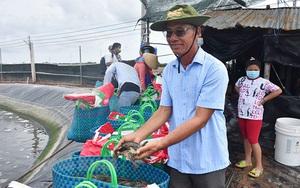 Tỷ phú nông dân nuôi tôm công nghệ cao nổi tiếng tỉnh Bến Tre