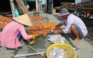 Huyện nào có bờ biển dài nhất, đánh bắt được sản lượng hải sản lớn nhất tỉnh Tiền Giang?