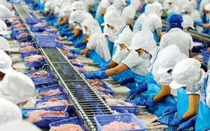 Vĩnh Hoàn được áp thuế chống bán phá giá cá tra 0% vào Mỹ của POR16
