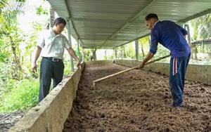 Thăm trang trại 14ha nuôi trùn quế lớn nhất Đồng Bằng Sông Cửu Long