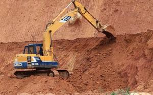 TT-Huế: Giám đốc doanh nghiệp và 2 chủ trang trại bị phạt tiền tỷ vì khai thác đất không phép
