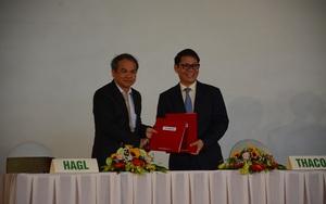 Quảng Nam: Ngân sách thu 9.100 tỷ, Thaco của tỷ phú Trần Bá Dương  hơn 5.000 tỷ trong 5 tháng