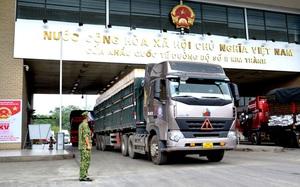 Bộ NNPTNT kiến nghị Ban Chỉ đạo quốc gia phòng chống dịch Covid-19 tiêm ngay vaccine cho lái xe chở nông sản qua cửa khẩu