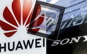 Huawei ngấm đòn trừng phạt của Mỹ, Sony cũng lao đao theo