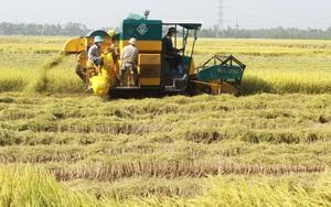 'Ngành nông nghiệp An Giang cần hướng đến chuyển đổi số'