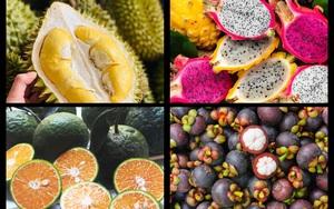"""Mách bạn 5 loại quả ăn ban ngày là """"thần dược"""", ăn buổi tối hậu quả khôn lường"""