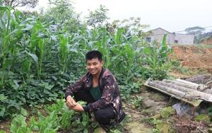 """Lạng Sơn: Anh nông dân dân tộc Dao """"không sợ ma"""" lên núi nuôi thứ cá lạ khiến cả làng phục lăn"""