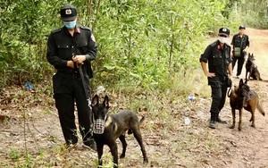 Quảng Bình: Khởi tố, phát lệnh truy nã bị can Lê Văn Triễn, nghi phạm giết mẹ vợ