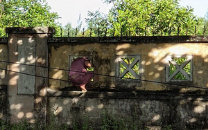 Phú Yên: Một nữ bệnh nhân Covid-19 leo rào ra ngoài bệnh viện dã chiến