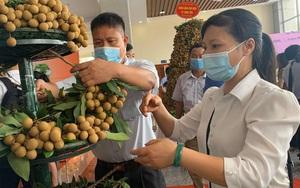 Hưng Yên đưa 1 trong 50 loại trái cây ngon nhất Việt Nam lên đường sang Mỹ, EU