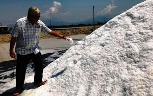 Khánh Hòa: Vay vốn làm muối, nuôi tôm nhiều nông dân thoát nghèo, lãi gần tỷ mỗi năm