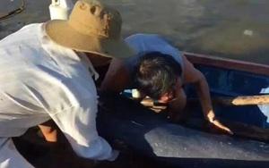 """Nóng Bình Định: Cuộc giải cứu cá heo nặng 50 kg bất ngờ… bơi """"lạc"""" vào sông"""