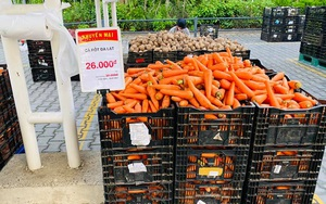 """TP.HCM: Siêu thị mang bắp cải, cà chua Đà Lạt… ra bãi xe bán """"giá sốc"""""""