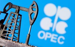 Dàn xếp xong mâu thuẫn nội bộ, OPEC+ đồng thuận tăng cung dầu