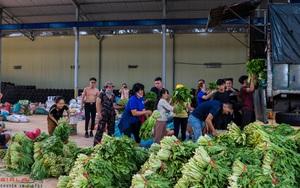 Gia Lai: Những chuyến xe 0 đồng chất đầy hàng chục tấn rau, củ, quả tươi ngon gửi về TP Hồ Chí Minh