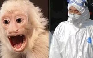 Bác sĩ thú y Trung Quốc mất mạng vì một loại virus vô cùng nguy hiểm