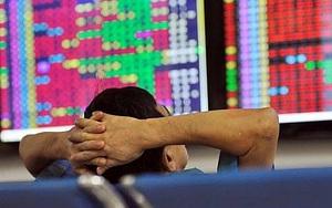 """Giám đốc Chứng khoán KIS Việt Nam: Nhà đầu tư có nên """"bắt đáy"""" vào lúc này?"""