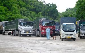 Nguyên nhân dẫn tới ùn ứ nhiều xe tải tại chốt kiểm dịch đèo Chuối - Lâm Đồng