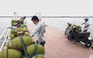 """TP HCM: Xã cù lao vẫn bị Covid-19 tấn công, buộc """"thông chốt"""" để nông dân sang sông bán thủy sản, trái cây đặc sản"""