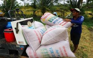 Giãn cách xã hội theo Chỉ thị 16: Giá lúa hè thu ở ĐBSCL giảm, nông dân lo lắng đủ kiểu