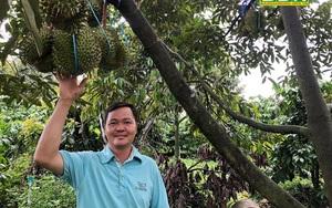 Đắk Nông: 19 hộ nông dân toàn nhà khá giả nhờ trồng sầu riêng cùng làm thương hiệu cho trái cây đặc sản