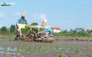 Hải Dương tăng cường cơ giới hóa vào sản xuất nông nghiệp nhờ công nghệ mạ khay, cấy máy