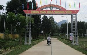 Quảng Nam: Phấn đấu đến hết năm 2021 có tỷ lệ 60% số xã đạt chuẩn nông thôn mới