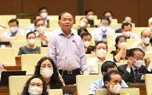 Đại biểu Quốc hội Lê Thanh Vân: Phó Chủ tịch phường ở Nha Trang nhận thức ấu trĩ về chống dịch