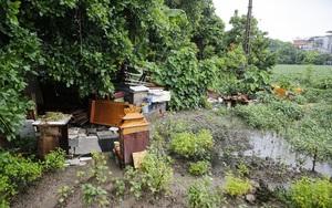 """""""Giậm chân tại chỗ"""" 7 năm, một hồ nước giữa trung tâm Hà Nội bị xâm lấn, ô nhiễm nặng nề"""