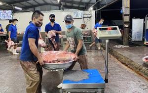 Khẩn trương truy vết các F liên quan đến lò mổ gia súc lớn nhất Đà Nẵng