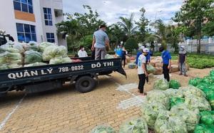 Phú Yên: Tạo thuận lợi cho người vận chuyển hàng hóa trong dịch Covid-19