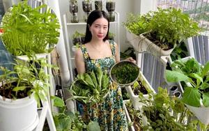 Clip: Kinh nghiệm trồng rau sạch từ chai lọ bỏ đi, ban công 7m2 vẫn ăn... mệt nghỉ