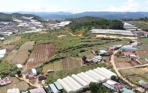 Dự án khu dân cư treo 12 năm, dân lâm cảnh khốn cùng: Vì sao Lâm Đồng liên tục gia hạn tiến độ?