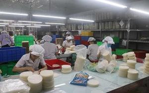 Thực phẩm Bích Chi (BCF) bị tạm đình chỉ hoạt động do có F0, khai khống công nhân lao động