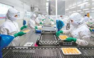 Tập đoàn PAN (PAN): Tôm xuất khẩu phục hồi mạnh mẽ, kéo lợi nhuận sau thuế quý II tăng 65%