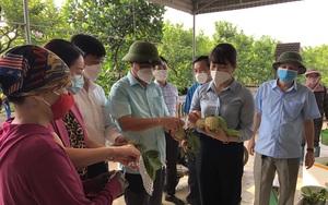 Trái cây đặc sản này đang chín rộ, Thái Nguyên bàn kế giúp nông dân tiêu thụ 4.500 tấn giữa mùa dịch