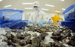5 tháng đầu năm 2021, xuất khẩu thủy sản của Việt Nam đã hồi phục về mức trước đại dịch