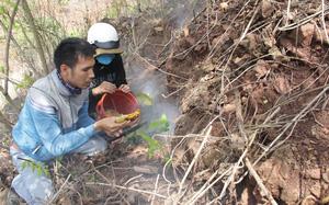 """Đắk Lắk: Kỳ thú, lang thang thổi khói mù mịt """"săn lộc trời"""" của loài côn trùng ưa làm tổ ở dưới đất"""
