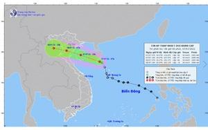 Áp thấp nhiệt đới đổ bộ từ Nam Định đến Thanh Hóa, có nơi mưa trên 300mm, nguy cơ ngập úng, sạt lở cao