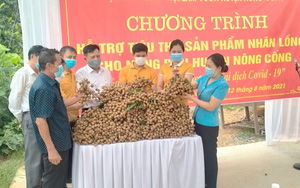 Thanh Hoá: Hội Nông dân huyện Nông Cống kết nối tiêu thụ 35 tấn nhãn cho hội viên