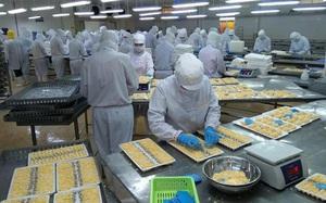 Camimex Group (CMX): Chuẩn bị chào bán 30 triệu cp để nghiên cứu, sản xuất thủy sản công nghệ cao