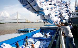 """Đơn hàng nhiều nhưng doanh nghiệp xuất khẩu gạo vẫn """"chật vật"""", làm gì để gỡ khó?"""